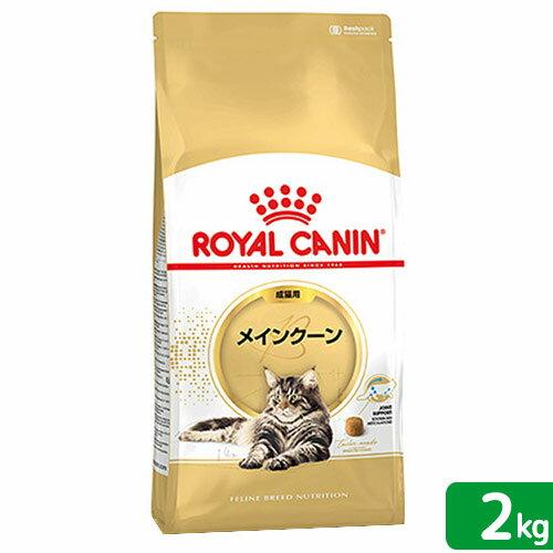 ロイヤルカナン 猫 メインクーン 成猫用 2Kg 3182550710640 お一人様5点限 ジップ付 関東当日便