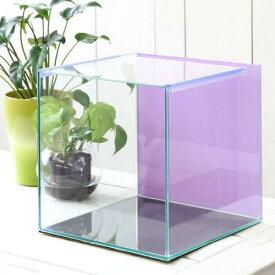 バックスクリーン貼付済 ライラック オールガラス27cm水槽 アクロ27N(27×27×27cm)(単体) お一人様2点限り 関東当日便