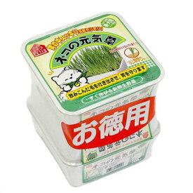 ペティオ ネコの元気草 お徳用3コパック 猫草 関東当日便