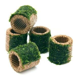 (水草)巻きたて ライフマルチ(茶) ジャイアント南米ウィローモス(無農薬)(1個)