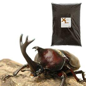 (昆虫)国産カブトムシ 幼虫(12匹) + XLマット カブト用 10リットル (説明書付) 本州四国限定