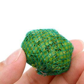 (水草)巻きたて オーストラリアン ノチドメボール(無農薬)(水上葉)(1個)