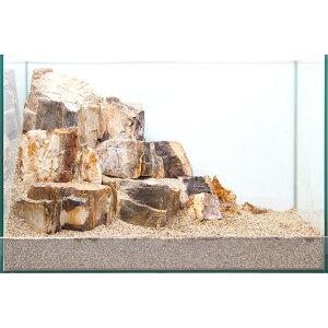 一点物 木化石 レイアウトセット 45cm水槽用 850198 沖縄別途送料 関東当日便