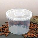 ディッシュボトル 丸型大(直径120×80mm) 穴あき フィルター付き 10個 プラケース 虫かご 観察 飼育容器 …