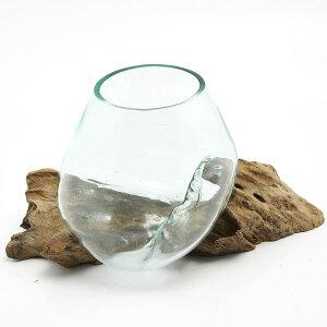一点物 ラウンドガラス ノーマルS 流木スタンド付(861282)コケ テラリウム ガラス インテリア 瓶 関東当日便