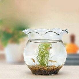GEX ジェックス ちっちゃなメダカ鉢 ガラス製金魚鉢 関東当日便