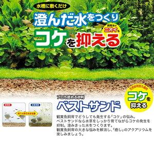 ベストサンド1.5L【ジェックス】【あす楽対応_関東】