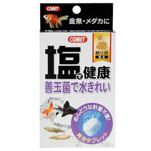 コメット 塩で健康 納豆菌 10個入り 関東当日便