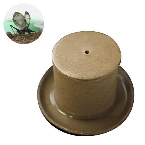(昆虫)鈴虫1ペア+和の音色 鈴虫飼育専用容器 益子焼 鈴音(直径95×85)(餌、餌皿、受皿付) スズムシ 飼育セット 本州・四国限定
