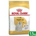 ロイヤルカナン BHN マルチーズ 成犬・高齢犬用 1.5kg 正規品 【bhn_201603_06】 関東当日便