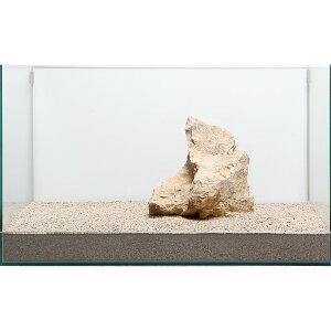 一点物 木化石 親石 60cm水槽用 896502 関東当日便