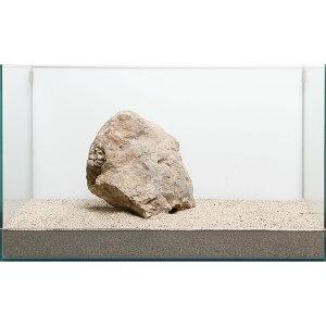 一点物 木化石 親石 60cm水槽用 896503 関東当日便