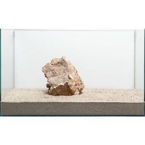 一点物 木化石 親石 60cm水槽用 896510 関東当日便
