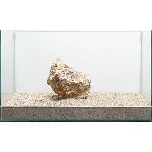 一点物 木化石 親石 60cm水槽用 896513 関東当日便