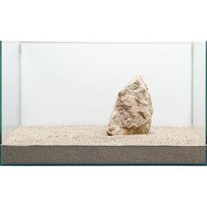 一点物 木化石 親石 60cm水槽用 896521 関東当日便