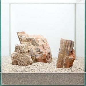 一点物 木化石レイアウトセット 30cm水槽用 896644 関東当日便