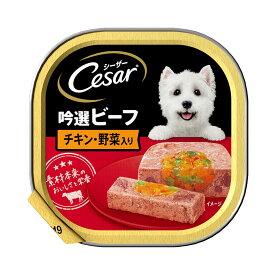 シーザー 吟撰ビーフ チキン・野菜入り 100g 24個 ドッグフード シーザー 関東当日便