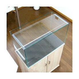 ガラスフタ オールガラス水槽アクロ60用(幅58.3×奥行24cm) 1枚 関東当日便