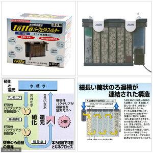 【50Hz】トットパーフェクトフィルターミニ(S型)淡水用50Hz(東日本用)【あす楽対応_関東】