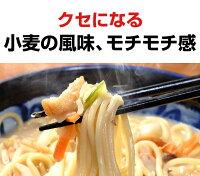 ちゃんぽん長崎ちゃんぽんちゃんぽん麺【送料無料】本場長崎ちゃんぽん生麺8食自家製スープ付本格ちゃんぽん