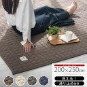 キルトラグ カーペット 200×250 cm 洗える 滑り止め付き ホットカーペット対応 床暖房対応 ブラウン/アイボリー/グレー/ネイビー CPT000204