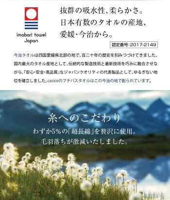 <今治プチバスタオル>【ネコポス送料無料】