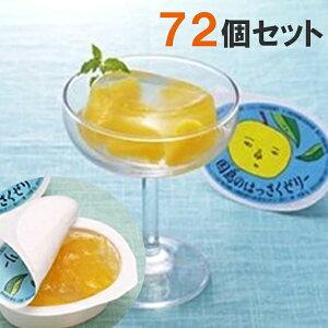 【送料無料】 因島 はっさくゼリー 72個セット 八朔果肉入り 果物ゼリー フルーツゼリー 贈り物 スイーツ ギフト