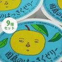 【送料無料】 因島 はっさくゼリー 9個セット 八朔果肉入り 果物ゼリー フルーツゼリー スイーツ