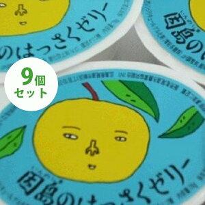 【送料無料】 因島 はっさくゼリー 9個セット 八朔果肉入り 果物ゼリー フルーツゼリー 贈り物 スイーツ ギフト