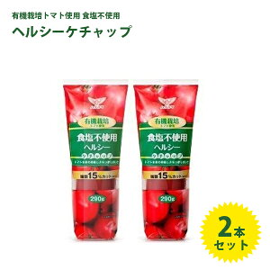 【送料無料】 ハグルマ ケチャップ 有機栽培トマト使用 無塩 290g×2個セット 調味料 化学調味料無添加