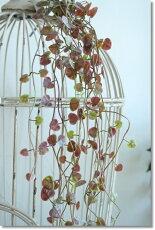 モダンヌハートカズラグリーンモーブ造花アートフラワーインテリアグリーン観葉植物フェイクグリーン消臭抗菌CT触媒長さ75cm