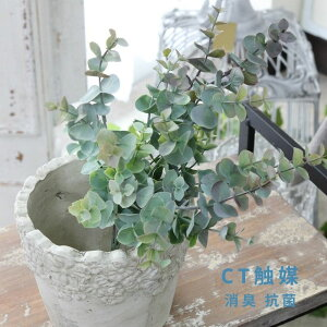 CT触媒 ニュアンスユーカリ 造花 アートフラワー インテリアグリーン観葉植物 フェイクグリーン消臭 抗菌 CT触媒 巾24cm×高さ34cm
