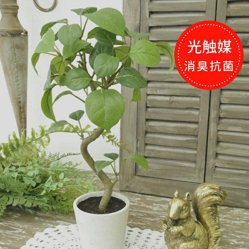 光触媒 観葉植物 造花 消臭グリーン インテリアグリーン フェイクグリーン【ベンジャミン 花器付き】