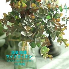 消臭グリーンフェイクグリーン造花ドライ風秋色CT触媒/フェイクグリーン(ユーカリ)葉径1〜2X長さ69cm