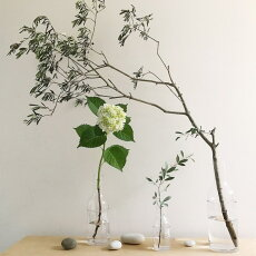 2WAYボトルフラワーベースガラス花瓶LABOGLASSMΦ10×高さ29.5cm
