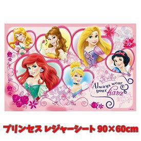 レジャーシート プリンセス 17 ディズニー 子供用 S 90×60cm VS1 子供 キッズ かわいい 女の子 【sh1144】