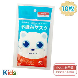 マスク 幼児 園児 低学年 10枚 5枚入り×2セット 子供 使い捨て プリーツマスク 不織布 使い捨てマスク キッズ 男の子 女の子 子供