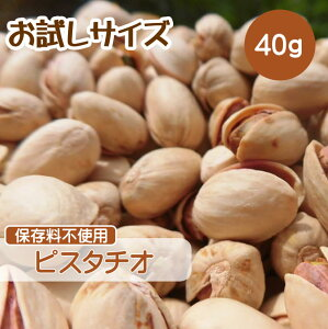 ピスタチオ 40g ロースト ナッツ ポイント消化 小分け ギフト 塩味 素焼き お試しサイズ 送料無料 CFL