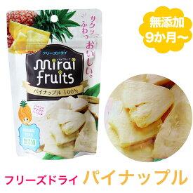 無添加 パイナップル 10g 離乳食 ベビー 赤ちゃん おやつ 子供 キッズ ドライフルーツ 砂糖不使用 無糖 ギフト