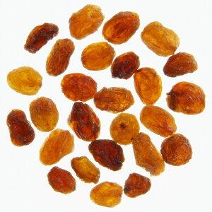 ゴールデン・サルタナレーズン F22X (12.5kg) /アリサン Alishan 【無添加・有機JAS・無漂白・オーガニックなどのドライフルーツやナッツ、食材が多数】