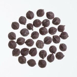 終売 キャロブチップス G21L (1kg) /アリサン Alishan 【無添加・有機JAS・無漂白・オーガニックなどのドライフルーツやナッツ、食材が多数】