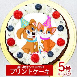 シェリーブランのオリジナル蒸しショコラ キャラクタープリントケーキ5号サイズ直径15cm≪4〜6名用サイズ≫ベルギー産チョコのキャラクタープリントケーキ