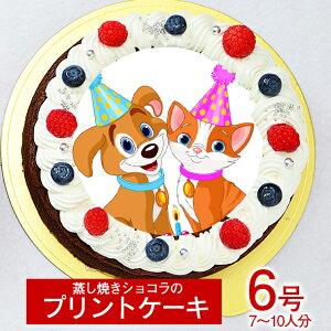 シェリーブランのオリジナル蒸しショコラ キャラクタープリントケーキ6号サイズ直径18cm≪7〜10名用サイズ≫ベルギー産チョコのキャラクタープリントケーキ