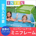 Intex_minifrale_m1
