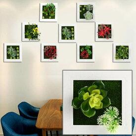壁掛3D立体 15×15cm 多肉植物 寄せ植え グリーンフレームアレンジ 壁掛け アレンジ 人工造花 樹木 インテリア フレームアート ディスプレイ