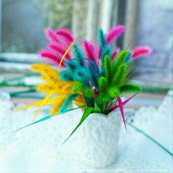 【ハーバリウム 花材 】1袋500円 ワンコイン 自分で選ぶ 少量パックでお買い得 送料120円〜 高級プリザーブドフラワー 長持ち 小花 ちば花プリザ カスミソウ アジサイ ばら ラン 猫じゃらし 紅葉 変った植物 カラフル 色がきれい かわいい 花 ガーデン