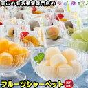 ◆送料無料◆フルーツ専門店のシャーベット 岡山 果物屋さんのひとくちシャーベット たっぷり45個入りで大満足 岡山…