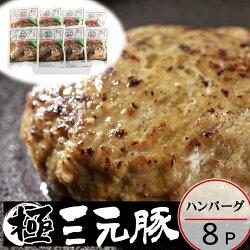 【冷凍】日本の米育ち三元豚ハンバーグギフト[HSF19-7]