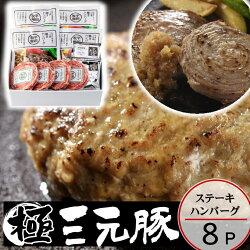 【冷凍】日本の米育ち三元豚ハンバーグ&ロールステーキギフト[HSF19-8]