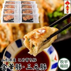 【冷凍】日本の米育ち金華豚・三元豚平田牧場特製生ぎょうざ96個ギフト[JGY-08]